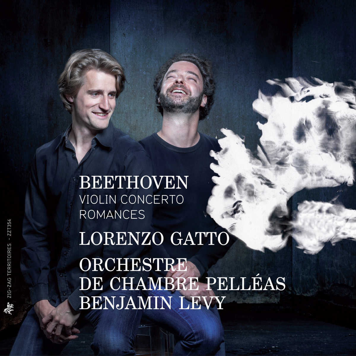 cover gatto beethoven zzt