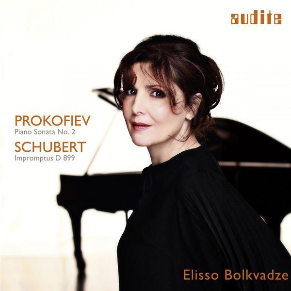 cover Proko Schubert Bolkvadze Audite