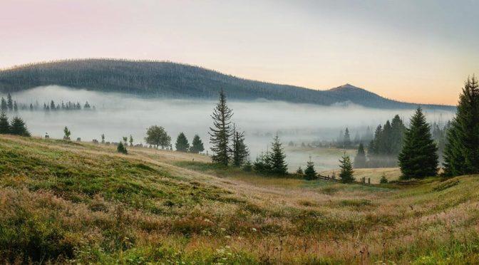 Par les près et les bois de Bohème